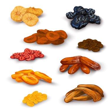 Dried fruit icons set