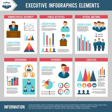 Executive Infographics Set