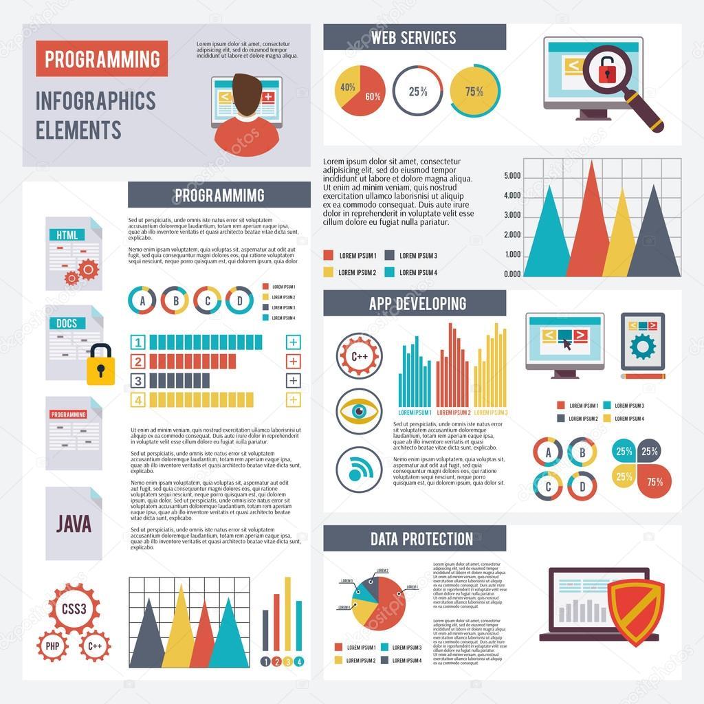 Programmer Infographics Set