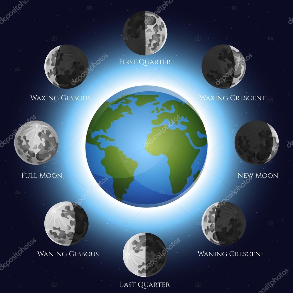 Moon Calendar Illustration : Moon phases illustration — stock vector macrovector