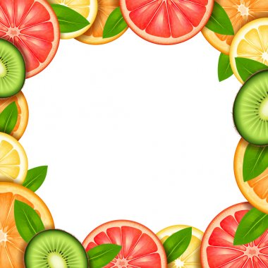 Fruit Frame Illustration