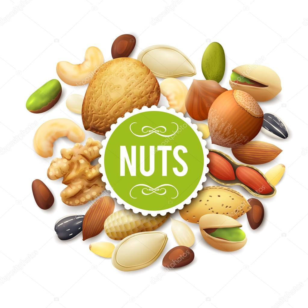 Nut Collection Illustration