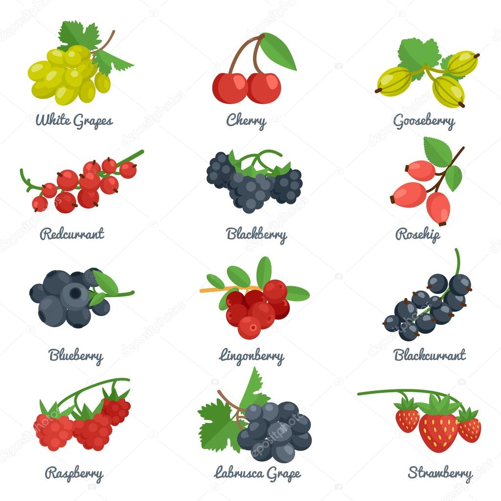 Berries Flat Icons Set