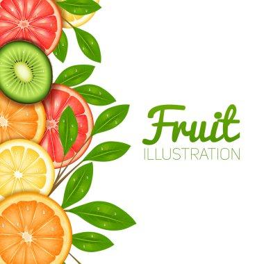 Summer Fruit Illustration