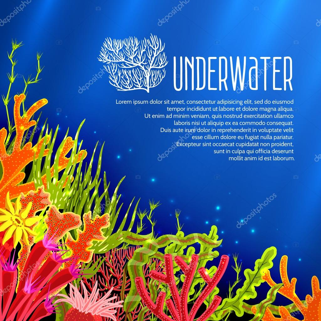 Underwater Corals Poster
