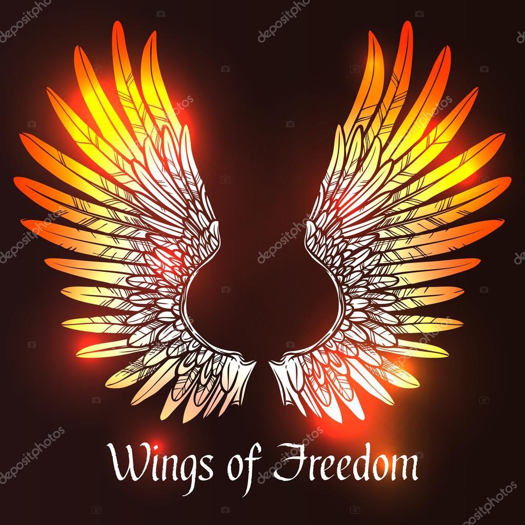 Wings Sketch Illustration