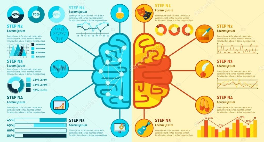 Left and right brain infographics stock vector macrovector 77158683 left and right brain infographics stock vector ccuart Choice Image