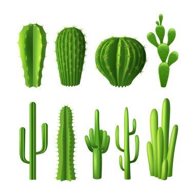Cactus Realistic Set