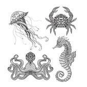 Fotografie Meer-Marine doodle Satz