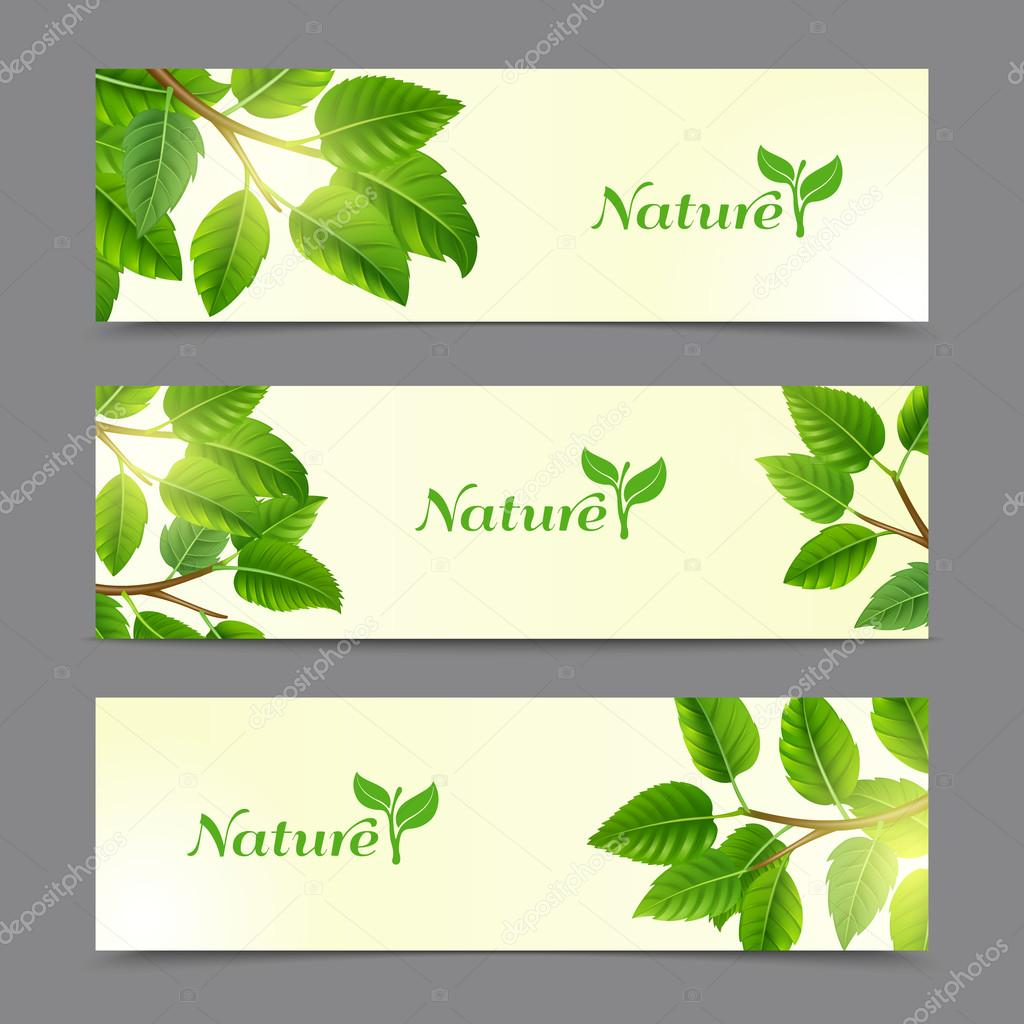 Green leaves eco banners set