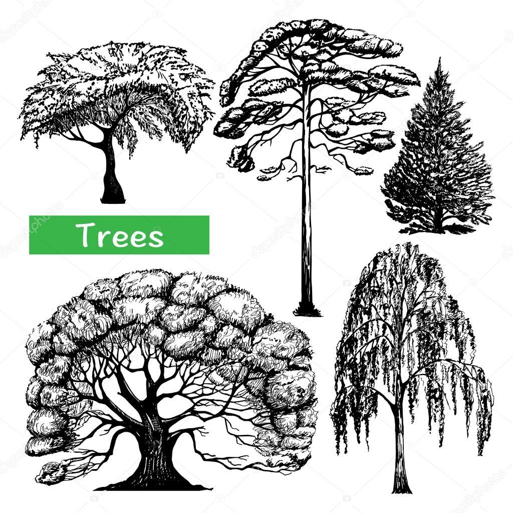 Trees hand drawn black icons set