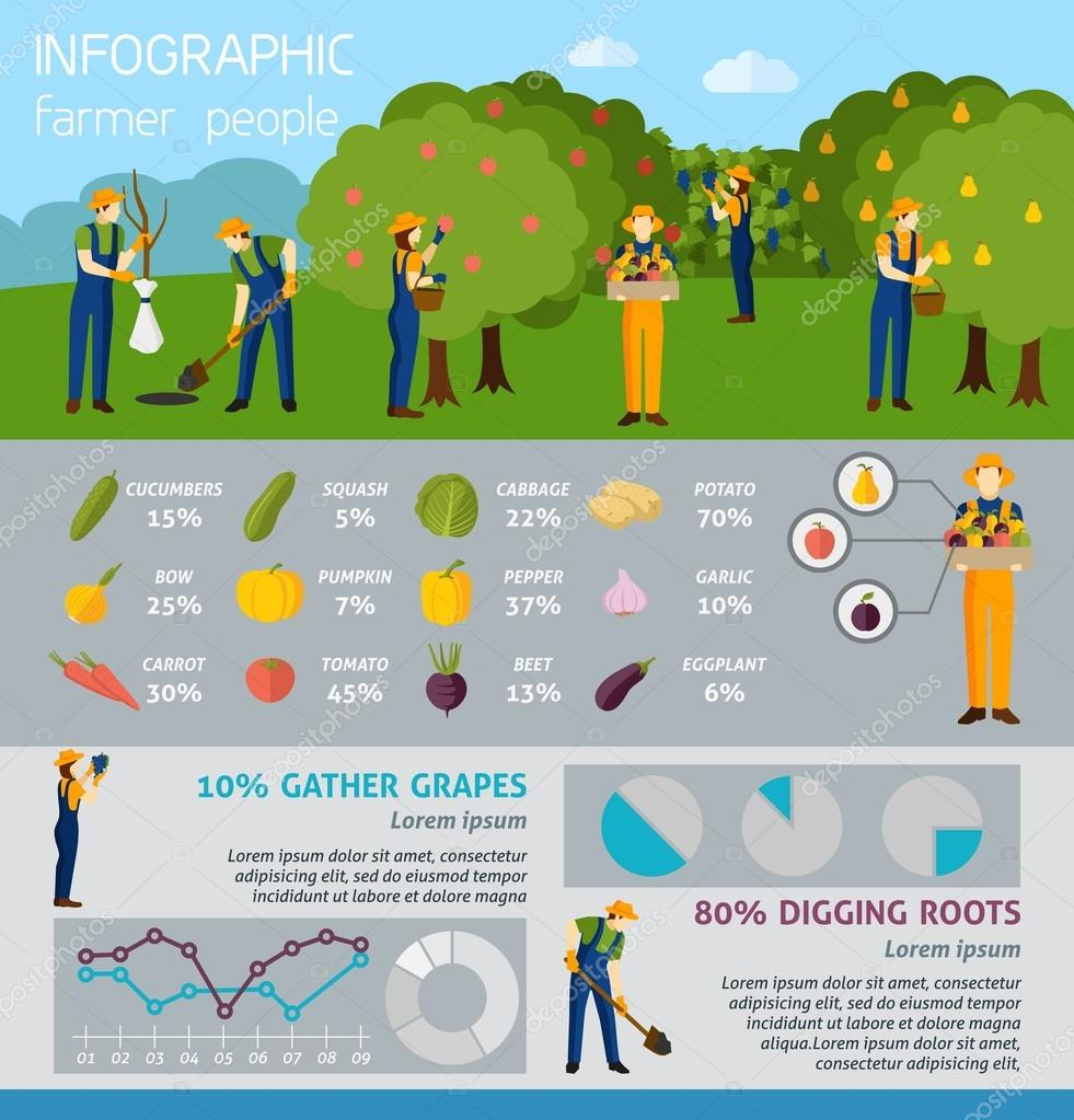Infographic  People In Garden And Farm