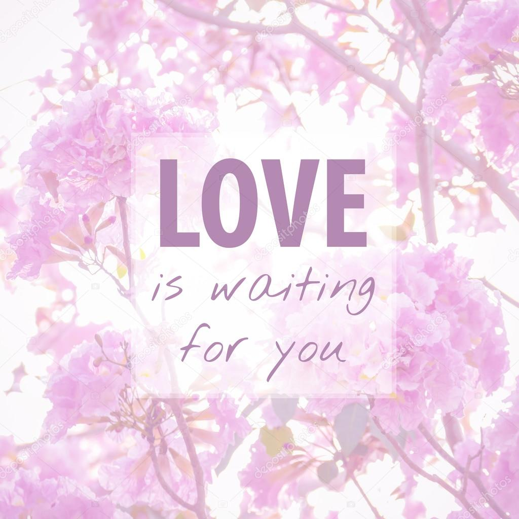 Quote About Love On Flower Background Stock Photo Parinyabinsuk