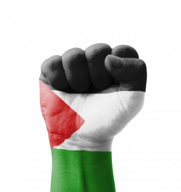 Fist of Palestine flag painted, multi purpose concept - isolated