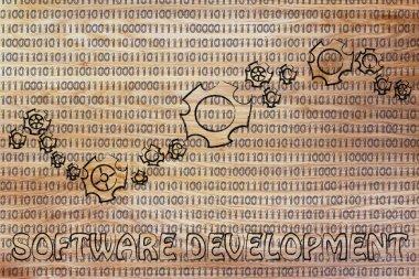 concept of software development