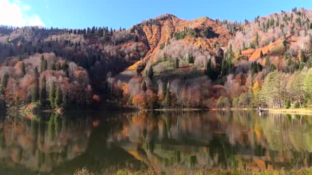 Pomalu přecházel po velkém dřevěném molu do jezera a přeletěl nad jezerní vodou. Tyrkysová voda v horském jezeře s borovicemi. Letecký pohled na modré jezero a zelené lesy jezera. Krásná podzimní krajina v podzimním dubovém lese.