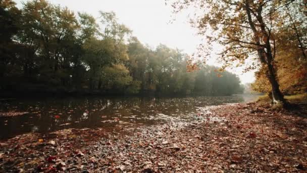 Slowly walking over a large wooden jetty into a lake and flying over the lake water. Turquoise water in a mountain forest lake with pine trees. Aerial view of blue lake and green forests lake. Beautiful autumn landscape in the autumn oak forest.