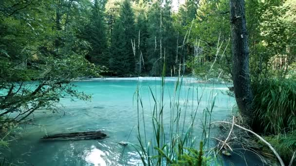 Slowly walking over a large wooden jetty into a lake and flying over the lake water. Turquoise water in a mountain forest lake with pine trees. Aerial view of blue lake and green forests lake.
