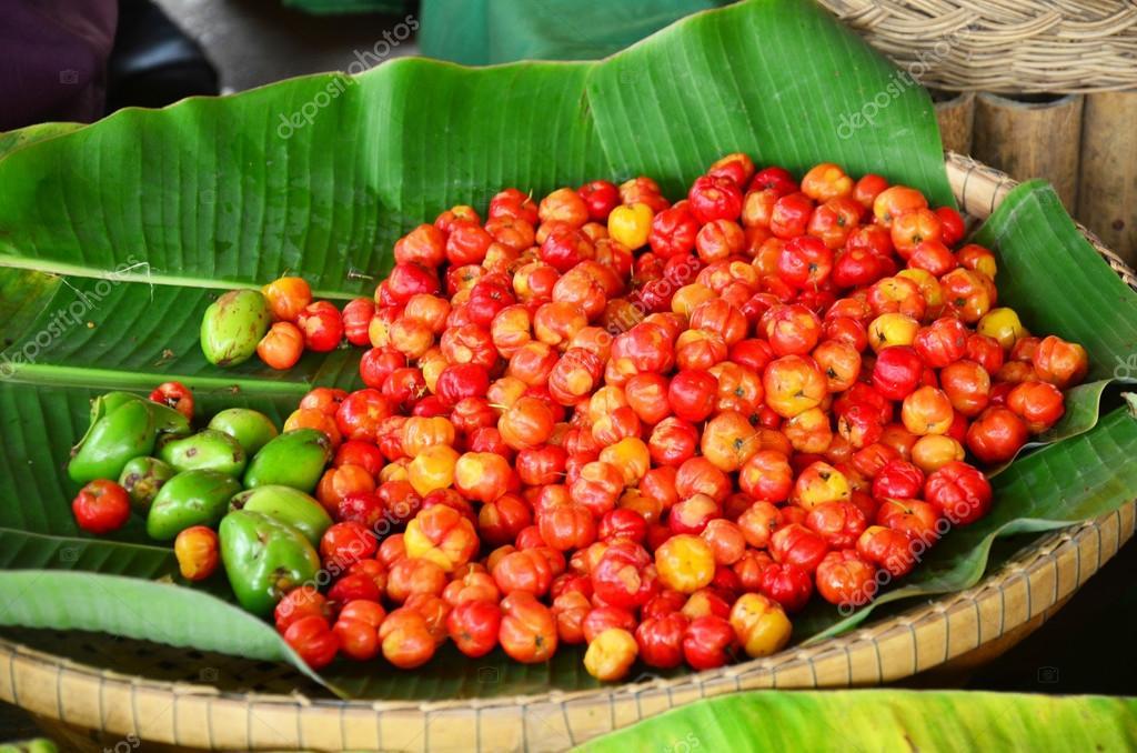 Barbados cherry fruits