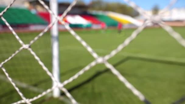 fotbalový cíl a net