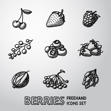 Set of freehand BERRIES icons - cherry, strawberry, raspberry, currant, blueberry, gooseberry, rowan, goji. Vector