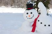 sněhulák mává