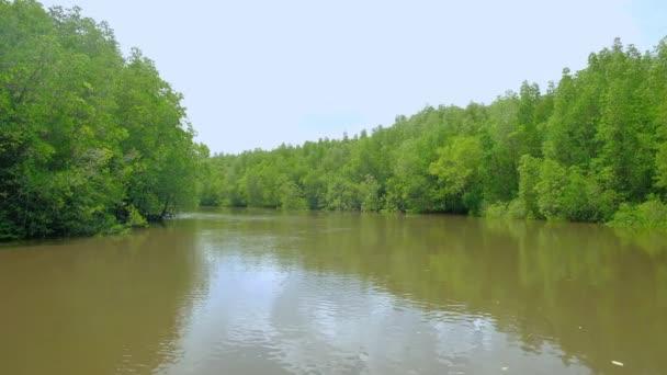 Cestovní ekosystém tradiční bambusové rafting přes bujné mangroves malebné v jedné ze žlutých říčních vodních cest Thajska. Je to venkovní dobrodružství v tropickém prostředí kanálů a lesů.