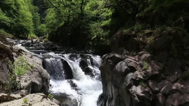 Hirkan River in the national park in Lankoran Azerbaijan