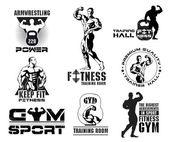 Fotografia Insieme dellannata Bodybuilding