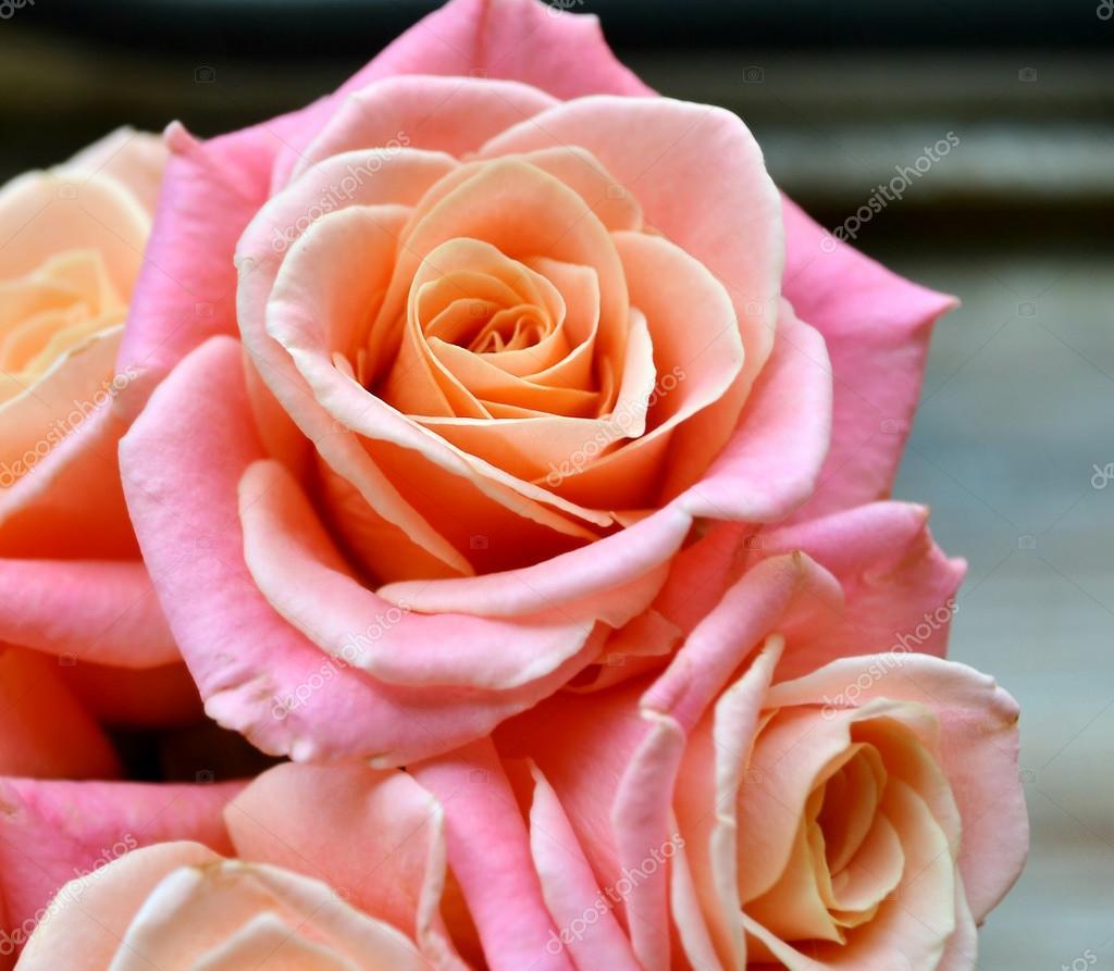Schone Hochzeit Bouquet Von Rosa Und Apricot Rosen Auf Holzernen