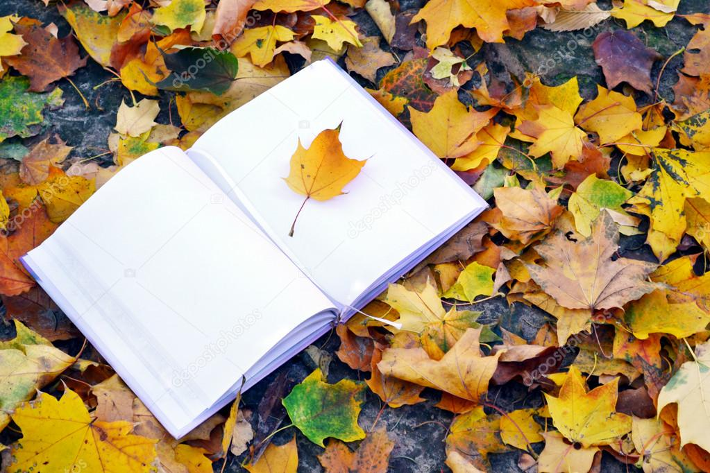 An empty notebook covered with autumn leaves
