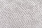 Fotografie textury kůže plazů