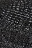 Fotografie Reptile skin texture