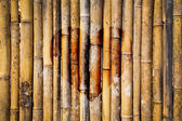 Fotografie Alten Bambus mit Herz
