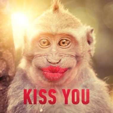 Funny monkey with big red lips