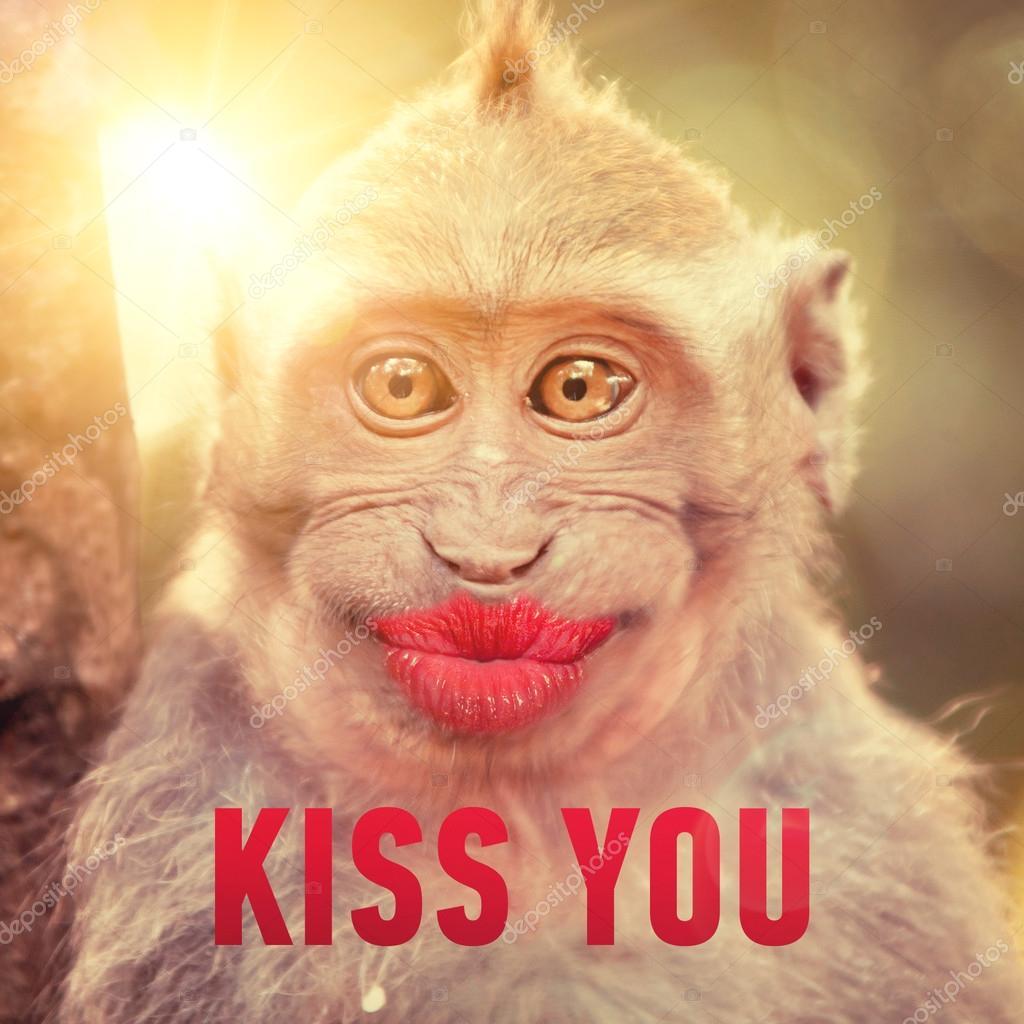 Scimmia Divertente Con Grandi Labbra Rosse Foto Stock