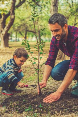 man planting tree with little son