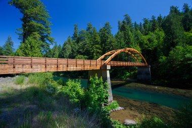 Tioga Bridge Over North Umpqua River