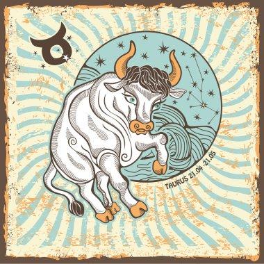 Taurus zodiac sign.Vintage Horoscope card