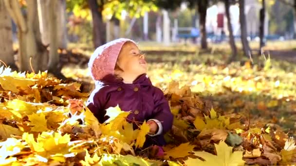 Small child playing in autumn park.Baby playing with yellow leaves.Little girl outdoors in autumn park.Portrait of a baby in autumn park.