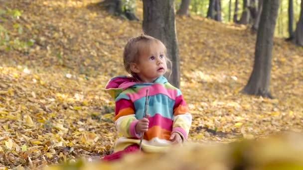Malé dítě hraje v podzimním parku. Dítě hraje se žlutými listy. Malá holčička v podzimním parku. Portrét dítěte v podzimním parku.