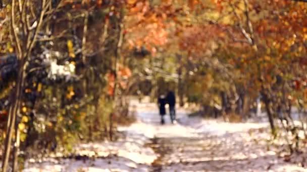 Sziluettjét pár őszi park sétálnak. Őszi park a hóban