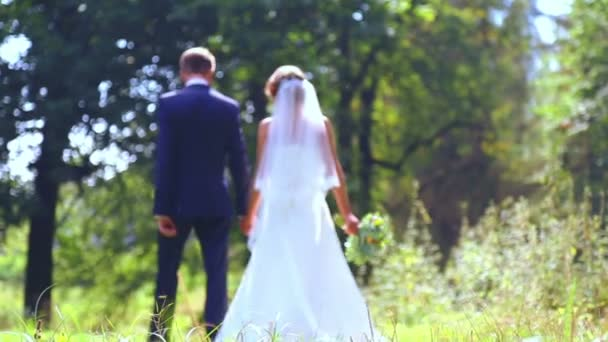 Caucasian bride and groom on the wedding day. Just Married, walking on the nature of the wedding day. Lovers, young bridal couple. Young couple enjoying each other. Holiday, wedding, happiness.