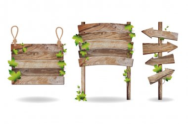 Wooden signs with green leaves decorative elements, Vector illus