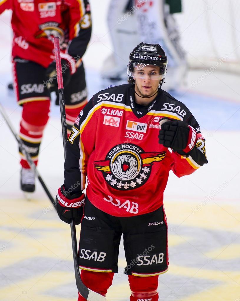 шведская хоккейная лига