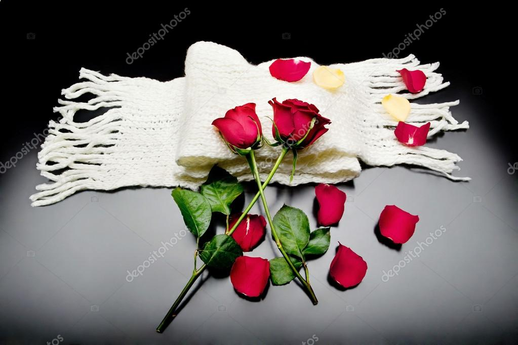 Two red roses together with red petals on a black background