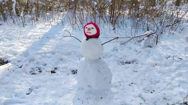 detailní sněhulák na zahradě v slunečný den
