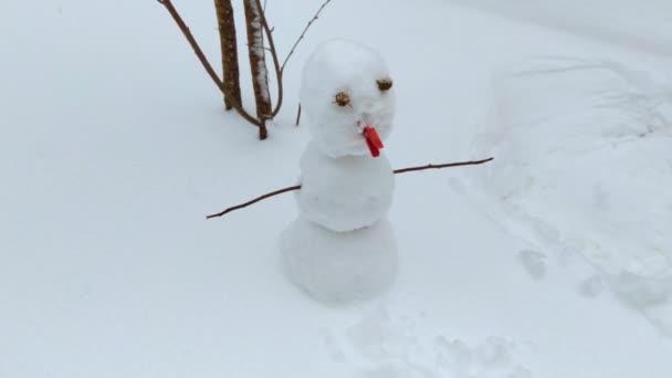 Nahaufnahme Schneemann im Garten bei sonnigem Tag