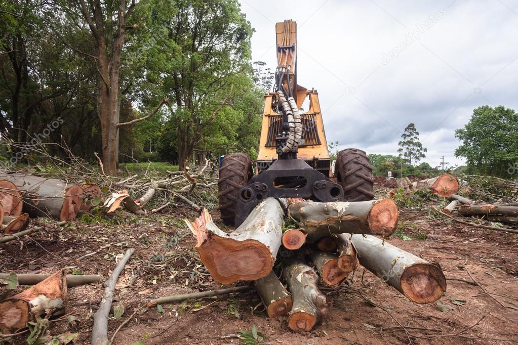Tree logs Lifting Machine