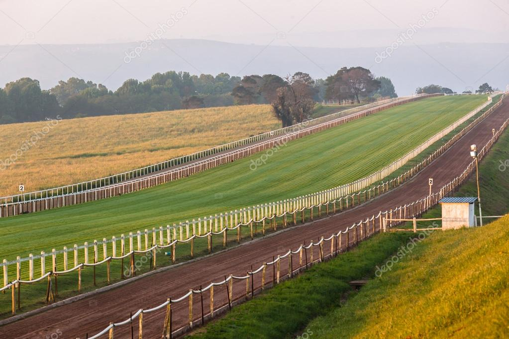 Horse Racing Grass Sand Training Landscape